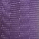 2010 Purple